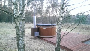 balia-finska